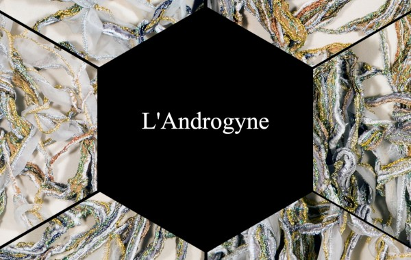L'ANDROGYNE PRIMORDIAL ( Video )